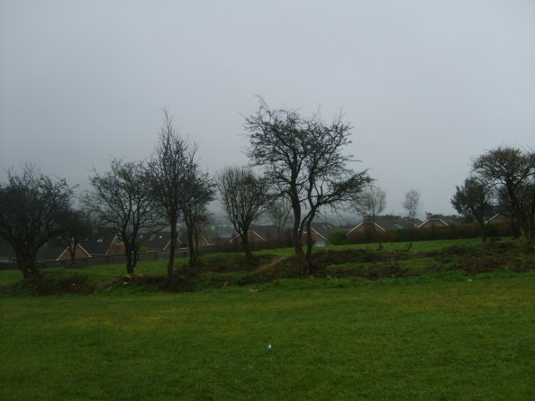 KILMONEY RINGFORT, DUN AN OIR HOUSING ESTATE, CARRIGALINE