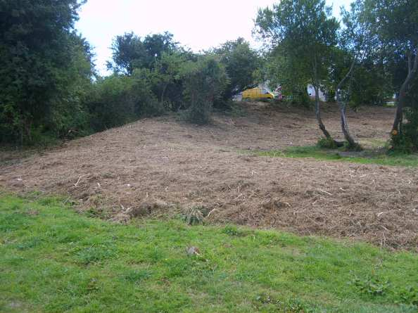 KILMONEY RINGFORT, CARRIGALINE, during cleanup august 2010