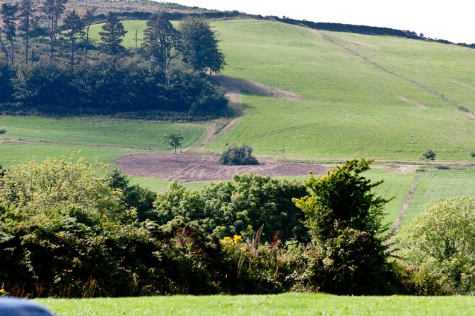 THE DESTRUCTION OF THE RINGFORTS AT KILMURRY, COUNTY CORK, IN 2010