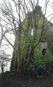 CARRIGALINE CASTLE TODAY